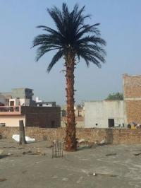 Artificial Date Palm Trees