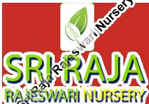 Sri Raja Rajeswari Nursery
