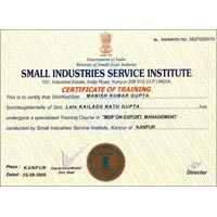 Small Industries Service Institute 02