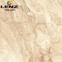 Digital Glazed Vitrified Floor Tiles (600X1200 MM)