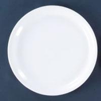 Acrylic Dinner Plates