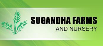 Sugandha Farms and Nursery