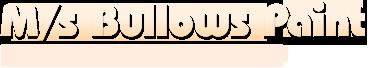 M S Bullows Paint Equipment Pvt Ltd