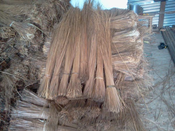 Coconut Broom Sticks Coconut Stick Broom Coconut Leaf
