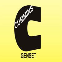 Cummins Genset