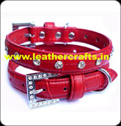 Designer Dog Collar Suppliers