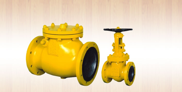 Contact Zed Valves Co  Pvt  Ltd , Ahmedabad India - STRAINERS