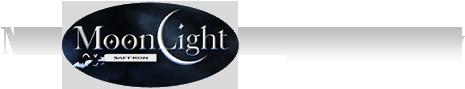 M/S Moonlight Kesar Company