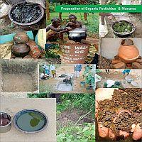 Preparation of Organic Pesticides & Manures