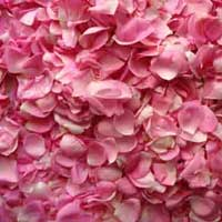 Dry Rose Petals (01)