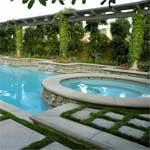 Poolsideplanting