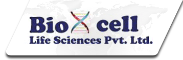 Bioxcell Life Sciences Private Limited