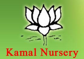 Kamal Nursery