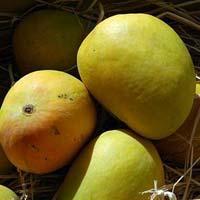 Mangoes