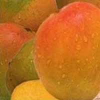 Natural Fruit Drinks