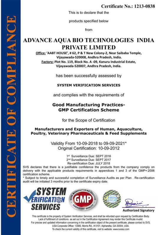 More Egg Manufacturer   NaturaLyte Exporter Vijayawada India