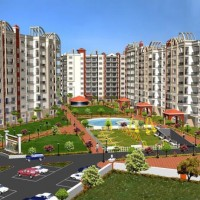 Builder & Developer in Bareilly