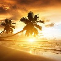 Beach/ Island Tours