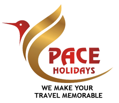 Pace Tours And Travels