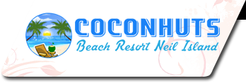 Coconhuts Beach Resort
