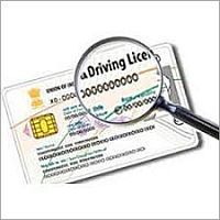 Driving Licence Services