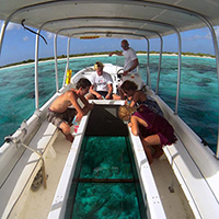 Glass Bottom Boating