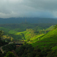 Naldehra Tour,Travel to Narkanda,Naldehra Narkanda Tour Packages,Himachal Tour to Naldehra & Nar