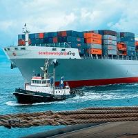 Export/ Import