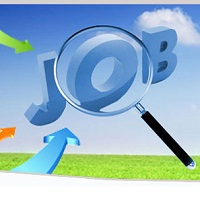 Tailor Made Job Search