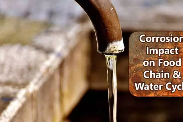 Corrosion Impact on Food Chain & Water Cycle