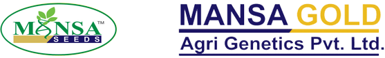 Mansa Gold Agri Genetics Pvt. Ltd.
