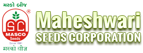 Maheshwari Seeds Corporation