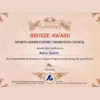 Bronze Award 2012-13