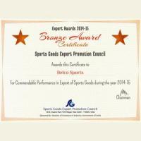 Bronze Award 2014-15