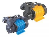 CRI Regenerative Monoset Pumps