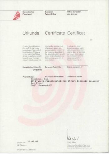 European Patent