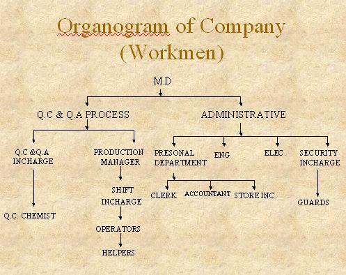 Organogram of Company(Workmen)