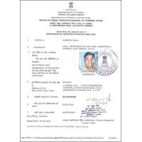Importer Exporter Certificate