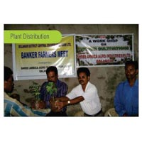 Plant Distribution