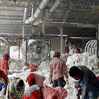Traditional Raw Cotton Cleaner