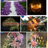 Decoration Services