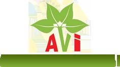 A V International
