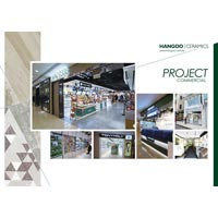 Commercial Project Card 01