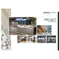 Commercial Project Card 03