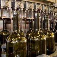 Food & Breweries