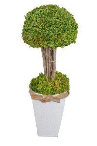 Artificial Bonsai Plant