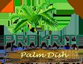 Prakriti Palm Dish