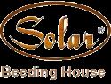 Solar Beeding House