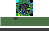 Universal Starch Chem Allied Limited