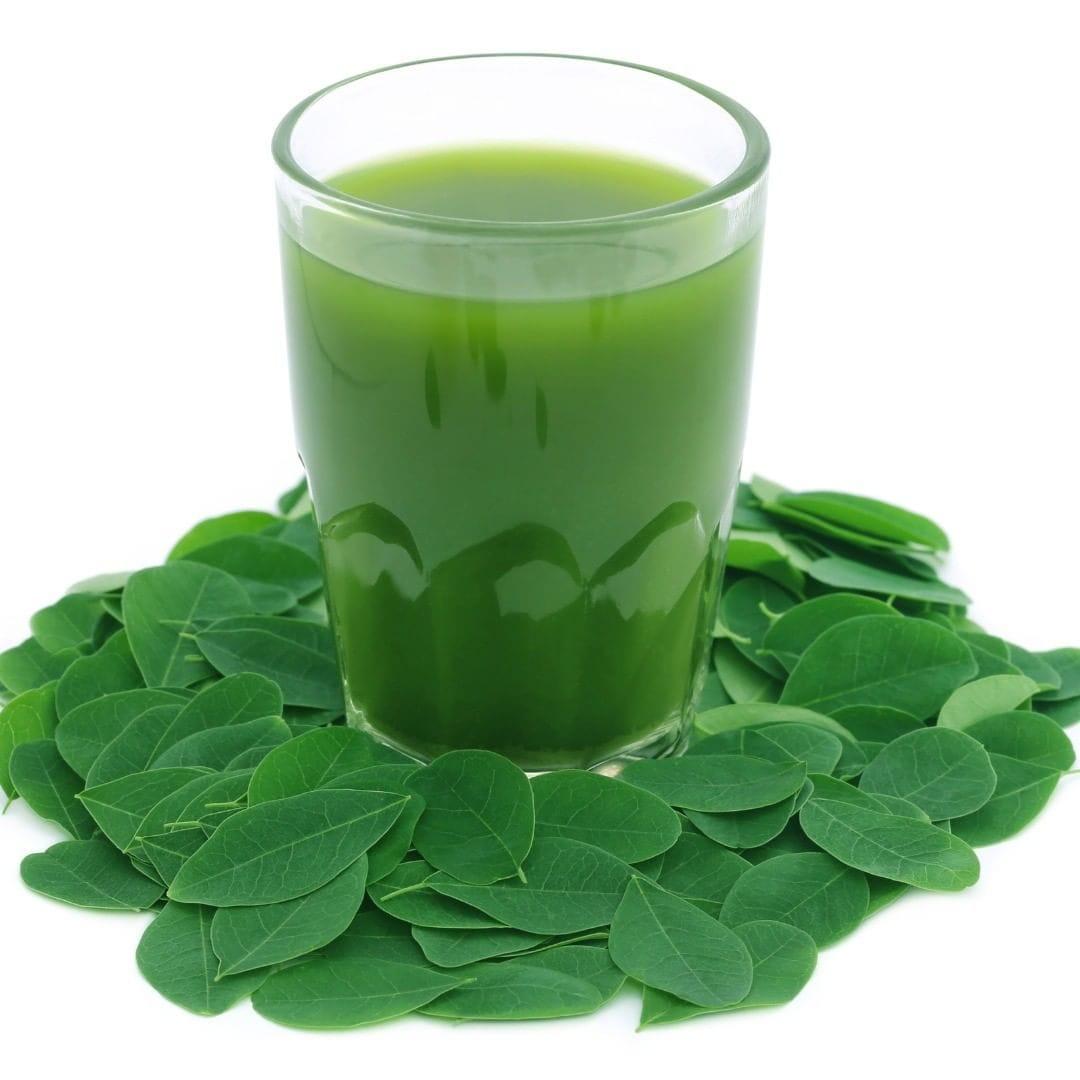 The Incomparable Benefits Of Moringa Tea